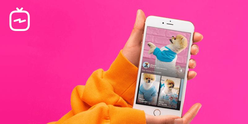 A Chave Para Vender No Instagram Sem Ter Que Gastar Um Único Centavo